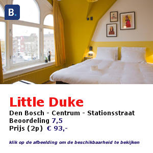 little duke hotel